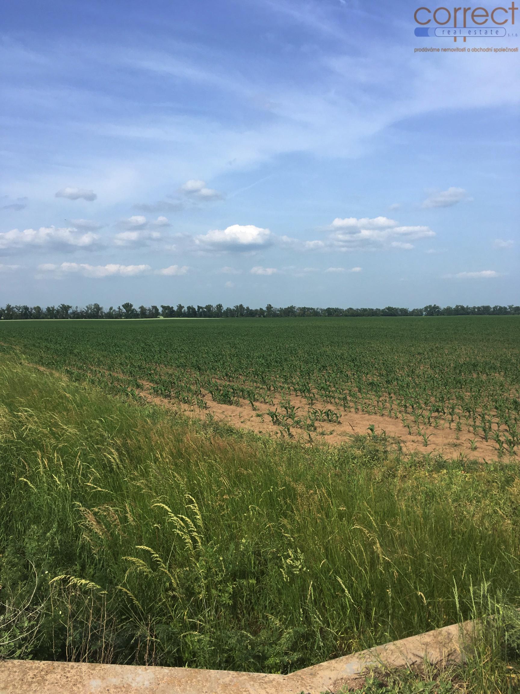 Prodej orné půdy, Žebětín, různá výměra od 1424m2 do 9720m2